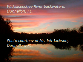 Withlacoochee River backwaters, Dunnellon, FL.